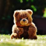 なぜ熊にハマってしまうのか?好きになる心理は?