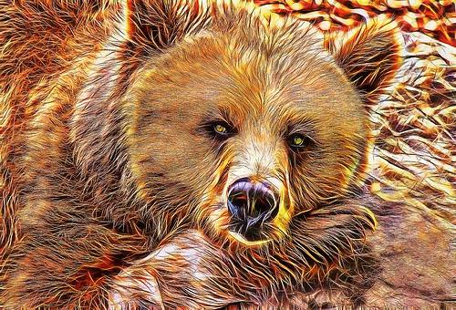 熊 油 作り方